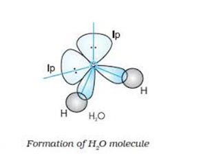 Water molecule (H2O)