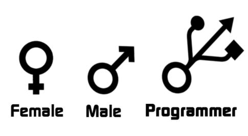 programmer gender