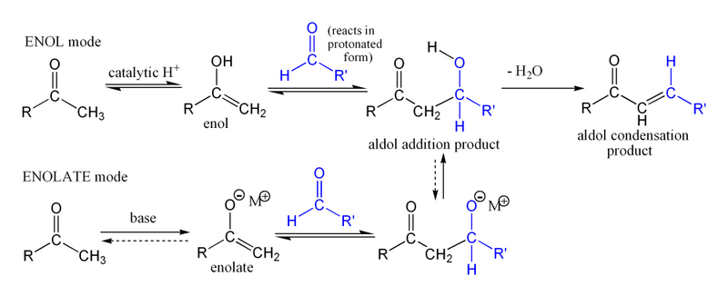 7490-1382_5850_800px-Simple_aldol_reaction.png