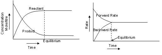 1053_forward and backward reactions.JPG
