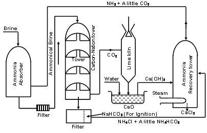 1594_Plant Process.JPG