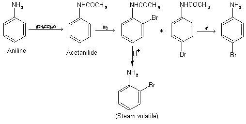 acetanilide lewis structure
